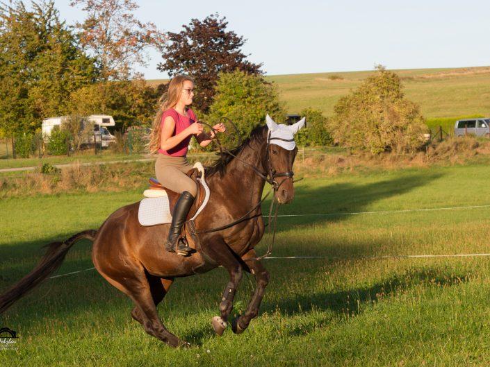 Pferdeshootings
